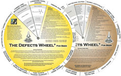 The Defects Wheel for Beer